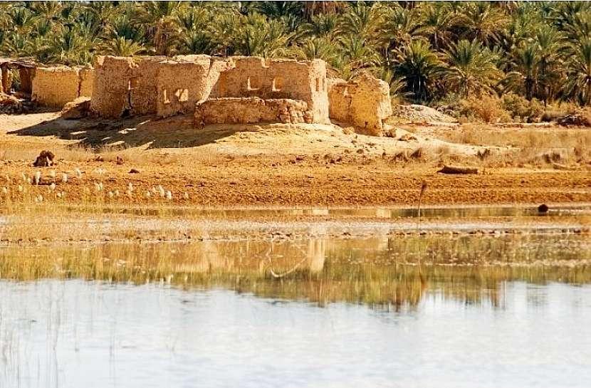 Síwa سيوة - království písku