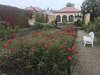Děčínský zámek - růžová zahrada