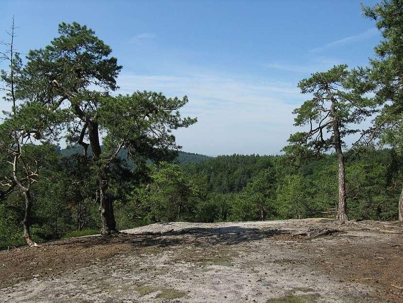 Skalnatá vyhlídka u lesního miniparkoviště před Nedvězí.