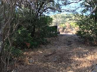 Cesta vnitrozemím, jsou zde patrné zaniklé salaše.